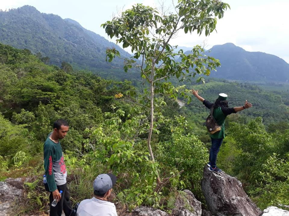 Image may contain: 1 person, standing, mountain, sky, tree, outdoor and nature